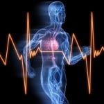 Precursors of Sudden Cardiac Death Elusive in Athletes