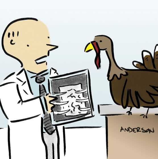 Turkey-Cartoon