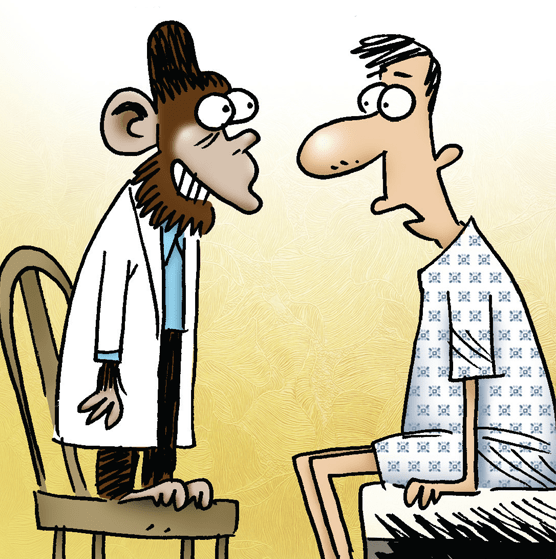 Monkey-Cartoon