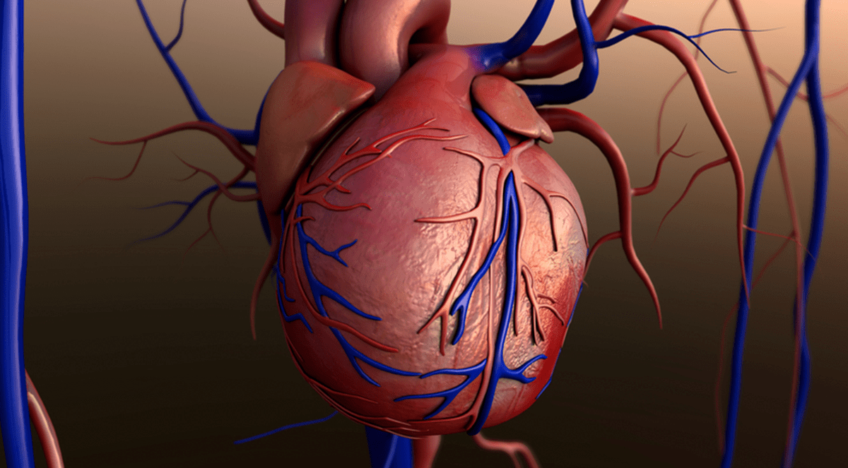 Post coronary artery bypass infections linked to severe obesity