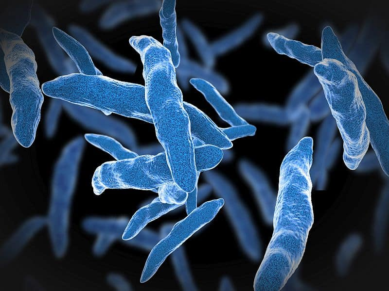 Tuberculosis/HIV Co-Infections Up 40% Across Europe Over the Last Five Years