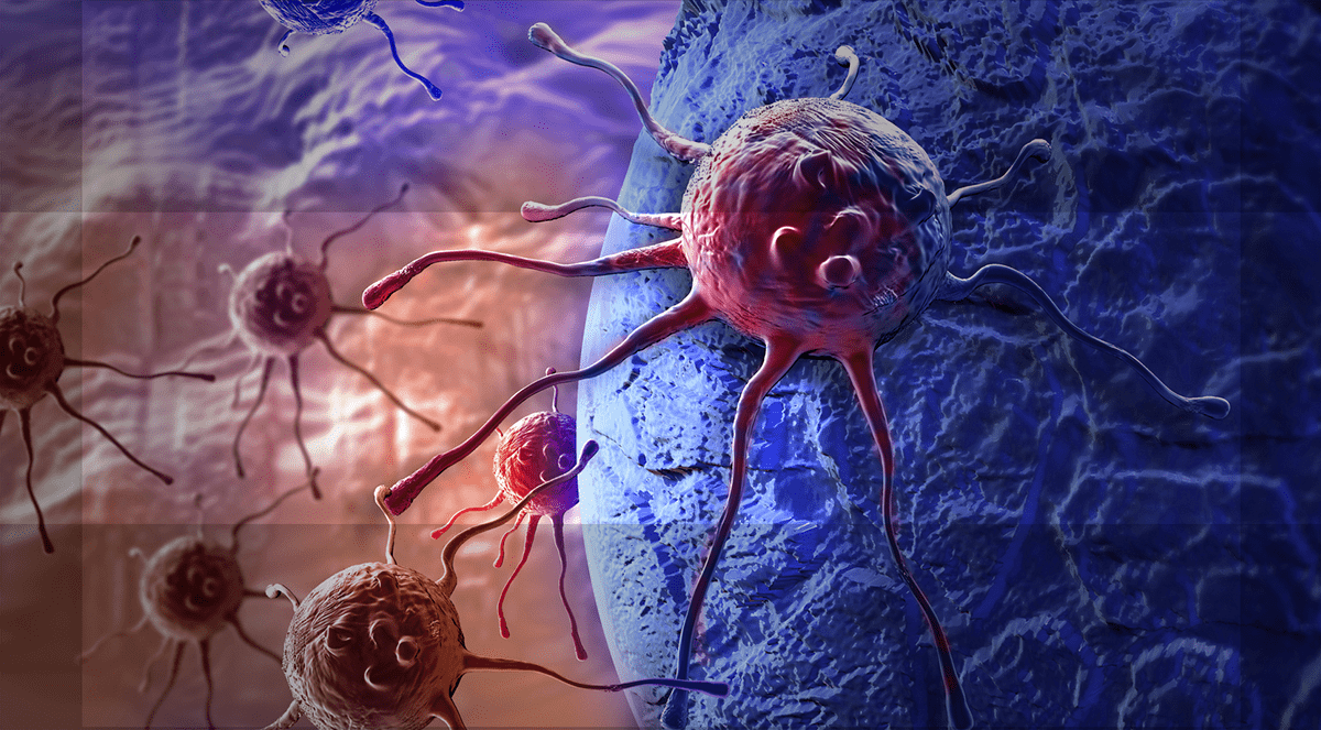 How Can Magnetic Bacteria Treat Cancer?