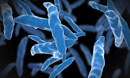Recs Updated for TB Screening, Treatment in Health Care Workers