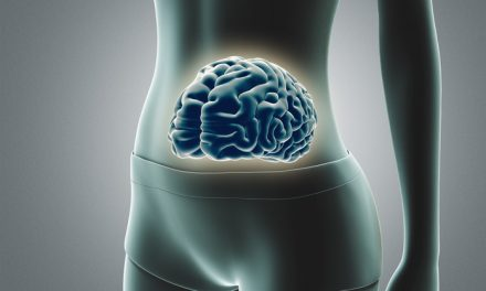 "Researcher Makes Case for ""Brain-Belly"" Link"