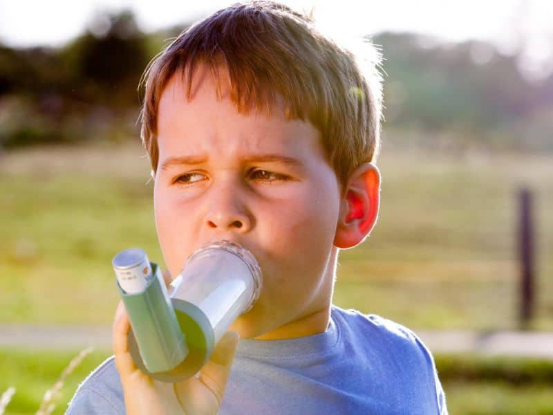 clonePromising Outcomes With Telemedical Asthma Education for School-Age Children