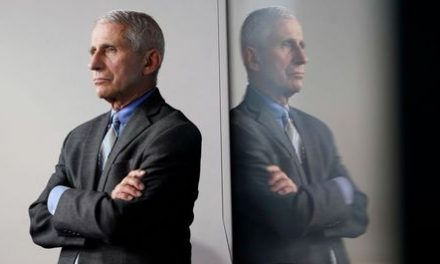 Fauci 'Cautiously Optimistic' for COVID-19 Vaccine by Year's End